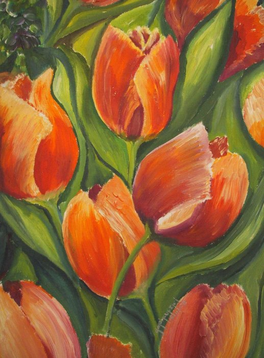 marianne´s tulips